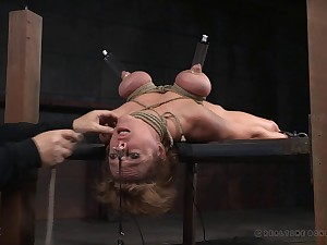 Dirty pornstar Dee Williams loves being tortured wits will not hear of darling